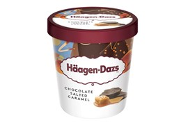 Häagen-Dazs Chocolate Salted Caramel ice cream 460ml/400g